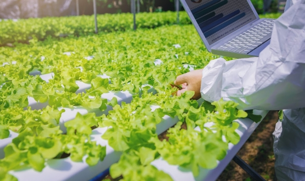5 Ways Technology Is Changing Agriculture